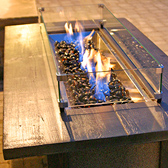 Sussex WI Gas Fire Table - Fire Pits